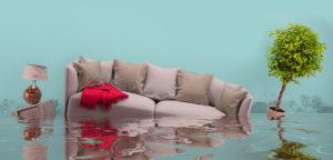 Water Damage Repair Converse Tx